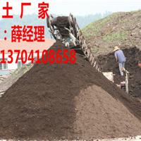 草炭土多少钱一方,草炭土制作图片