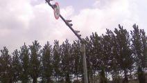 供应雷达 测速仪固定高清测速仪