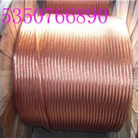 供应永安防雷-铜包钢圆线|首先永安防雷