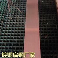 镀铜扁钢 厂家 批发 价格 图片