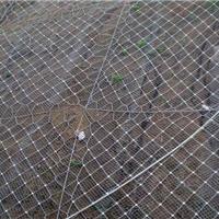 库存批发国标被动型RX-075边坡防护网