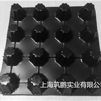 浙江 2.5 排水板最新款-上海筑鹏