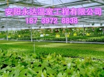 安阳永达温室工程有限公司