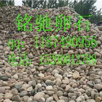 供应鹅卵石 鹅卵石厂家供应 鹅卵石价格
