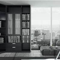 上海翰诺威家具零甲醛环保书柜行业领先