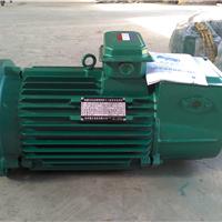供应塔机专用回转电机YZR132-6/3.7KW