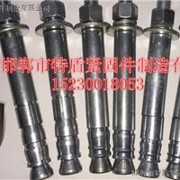 特盾机械锚栓生产厂家,永年直销