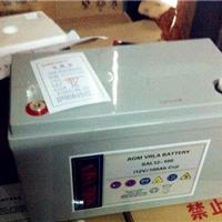 美国索润森蓄电池SAL12-100报价