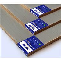 沿海木业丨生态板丨环保板丨家具板丨装修板