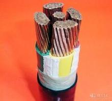 WDZBNYJV低烟无卤无毒环保型电力电缆