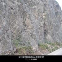 供应SNS柔性边坡防护网