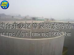 供应鲁蒙LM VRA混凝土结构防腐防水涂料