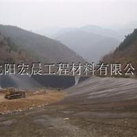 供应沈阳垃圾填埋HDPE土工膜