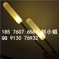 供应澜星LED变色七彩芦苇灯灯光亮化街道灯