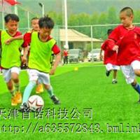 人造足球草坪 天津足球场地板