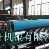 供应厂家直销HDPE排水板生产设备