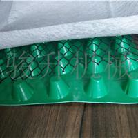 塑料排水板 HDPE排水板  塑料凸片 排蓄水板