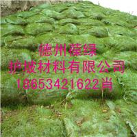 供应葆绿丙纶生态袋护坡袋