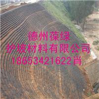 厂家供应葆绿环保护坡袋生态袋 生态袋护坡