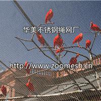 鸟园围网/动物笼舍防护网/不锈钢绳网厂家