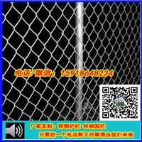 大亚湾电厂围栏网/铁丝网/钢丝网