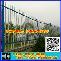 海南铁护栏加工|定安文物隔离铁栅|钢围网