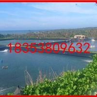 山东金驰牌HDPE土工膜应用于海南高位池养虾