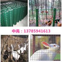 8cm孔铁丝网价格-云南花草养殖铁丝网批发商