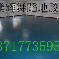 供应专业地胶 舞蹈专用地胶多少钱 舞蹈房专用地胶