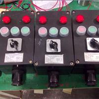 供应FZC-S-A2B1D2L防水防尘防腐操作柱
