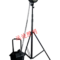 D-FW6101防爆泛光工作灯--可任意调节照明角度!