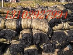 供应涿州市岩棉被厂家