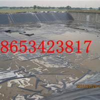 供应聚乙烯土工膜价格
