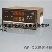 供应智能巡检仪-热电阻-WP-D多路温度巡检仪批发、描述