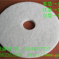 供应17寸百洁垫|台湾蝴蝶清洁垫|BF-4100