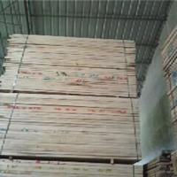 供应烘干柞木,桦木,樟子松木板材