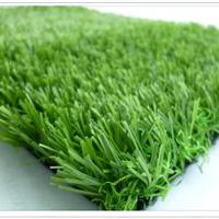 供应人工草坪\草坪价格|草坪供应