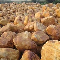 广东风景石、园林石、景观石批发生产基地