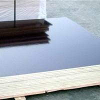 现货河北廊坊建筑模板 金亨模板价格 清水模板全国30强