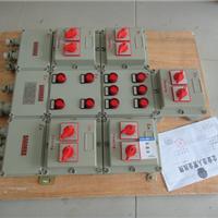 供应CBP51-DIP系列粉尘防爆配电箱