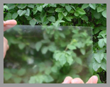 供应AG防眩玻璃/漫反射玻璃/防反射玻璃/无影玻璃
