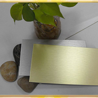golden silver brush finish ACP