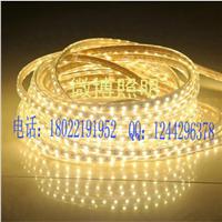热销高白光5050贴片灯带,春节户外景观装饰灯带