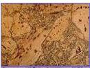 供应葡萄牙进口软木 软木墙板,软木地板