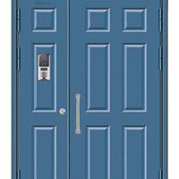 供应西州牌氟碳喷涂平板门 仿铜平板门不锈钢平板门钢制平板门
