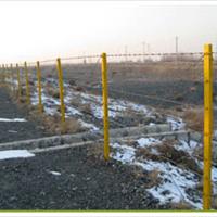 供应刺绳防护网/围网/隔离网/围栏/护栏网