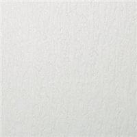 硅藻泥是能净化空气的装修材料