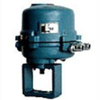 ZDLP-16KS电动单座调节阀361LSB-50,361LSC-65