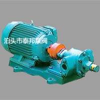 供应TYB-100可调压式齿轮油泵