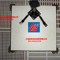 上海宜宽牌国标品质防静电PVC地板